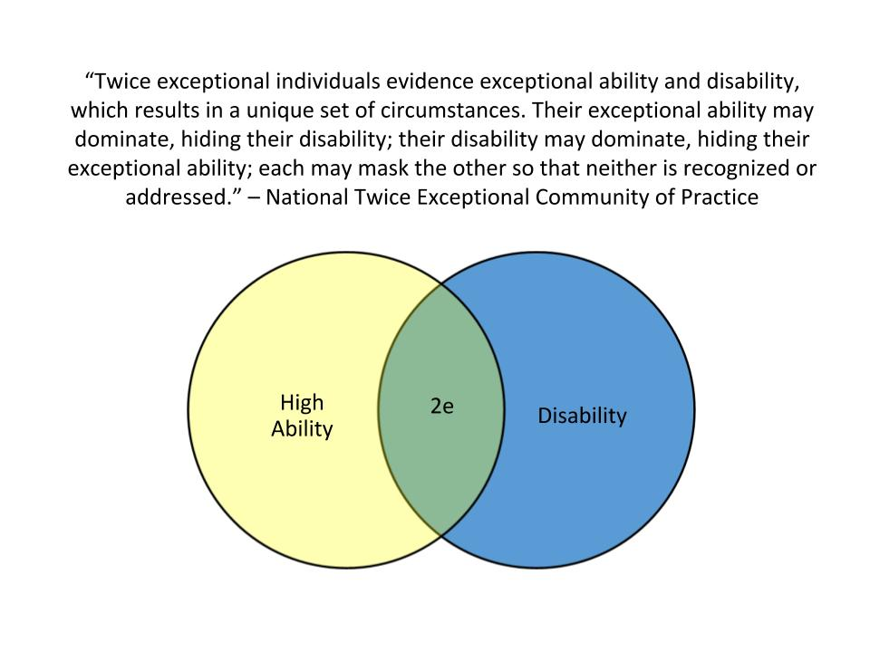Twice exceptional individuals are gifted and have one or more disability.
